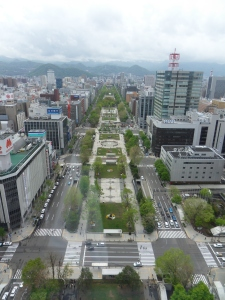 View from Sapporo TV Tower